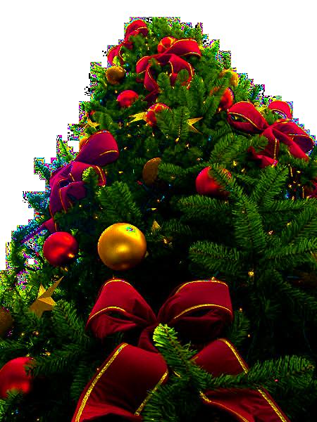 Fotografía de Navidad: para qué sirve y cómo hacerla bien